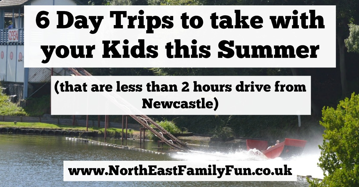 6 Day Trips to take with your Kids this Summer (that are less than 2 hours drive from Newcastle)