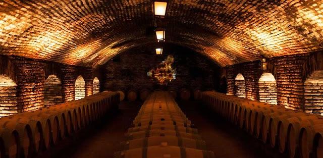 Como é a excursão para a vinícola Concha y Toro