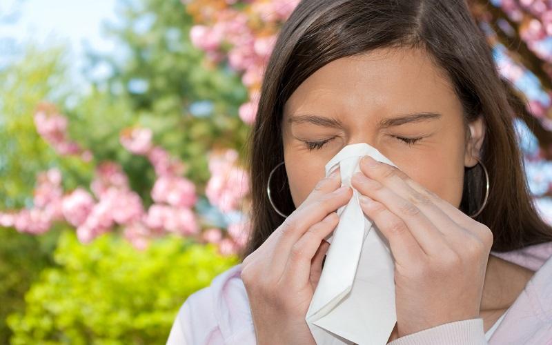Os melhores anti-histamínicos naturais para combater reações alérgicas