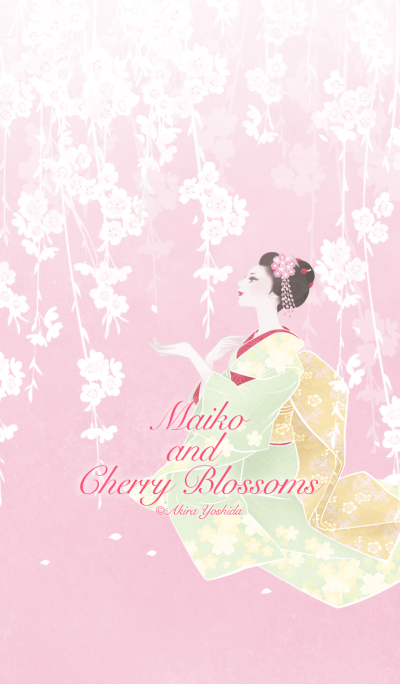 Maiko and Cherry Blossoms