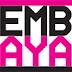 Pembe Hayat Kırmızı Şemsiye Seks İşçileri İnisiyatifi 3 Mart Programı.