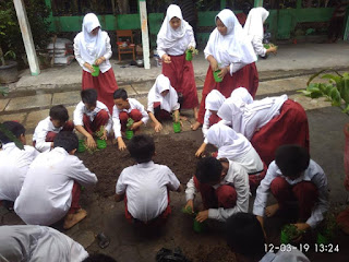 Sekolah Hijau