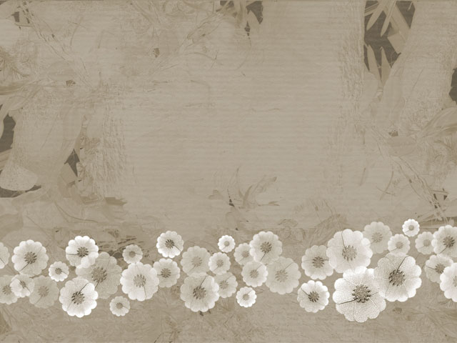 klasik wallpaper - photo #38
