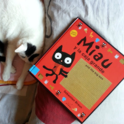miau-caja-grande