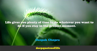 Life gives you plenty of time to do whatever you want to do if you stay in the present moment. -Deepak Chopra