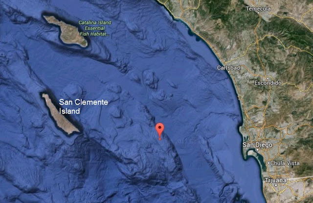 Location of storm-petrel flock west of San Diego