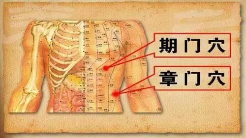 """""""人之所有者,血與氣耳""""十大補氣穴位和十大補血穴位(氣血才是生命的根)"""