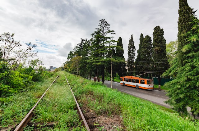 Сухуми, Тбилисское шоссе, около госдачи