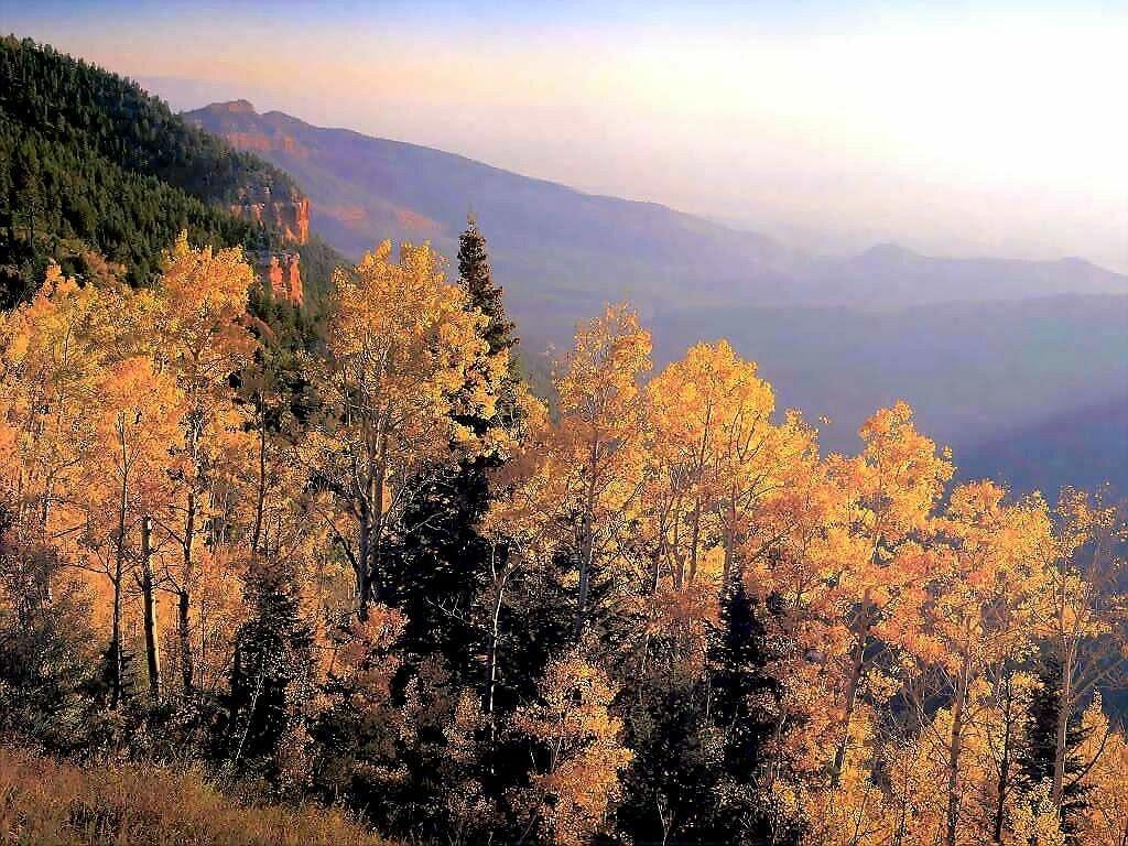 Fondos Otoño Wallpapers Autumn Fondos De Pantalla De Otoño: Imagenes Fotograficas: Imagenes De Otoño