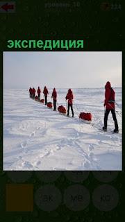 несколько человек на лыжах идет на севере в экспедицию