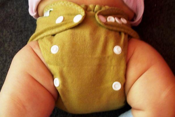 Otulacz wełniany ecodidi jak leży na pupie pieluszka wielorazowa