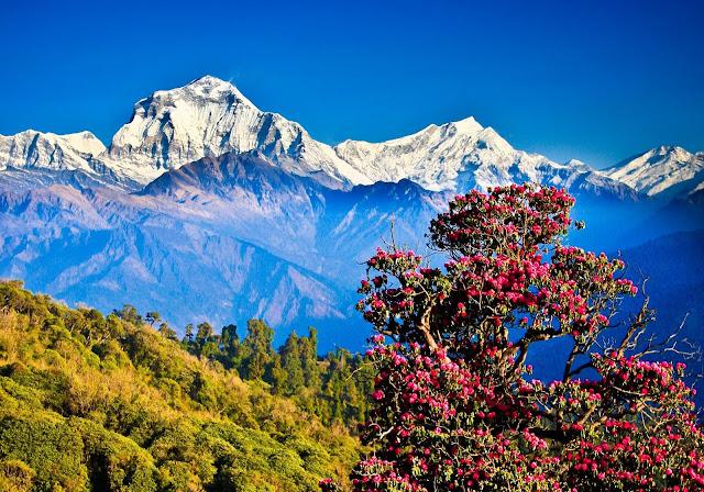 Nepal Tour Pokhara & Chitwan