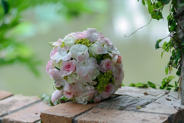 hoa co dau dep nhat 1