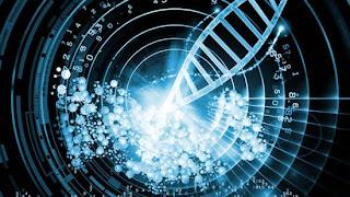 Az első alkalommal sikerült a tudósoknak tárolniuk egy 300 oldalas könyvet DNS-ben