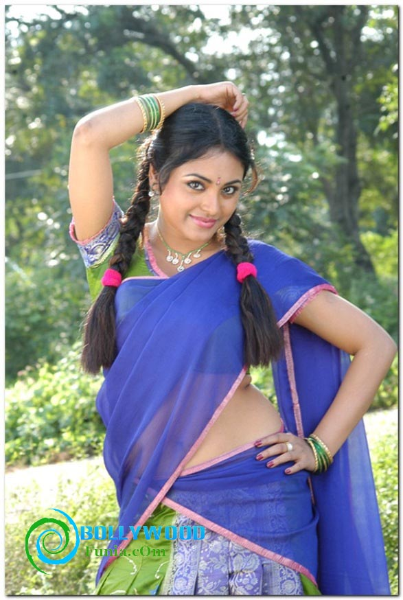 B-Town South Indian Hottie Meenakshi Hot Navel Show Saree -2389