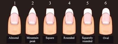 Uñas esculpidas diagrama con la forma y diseño de uñas.