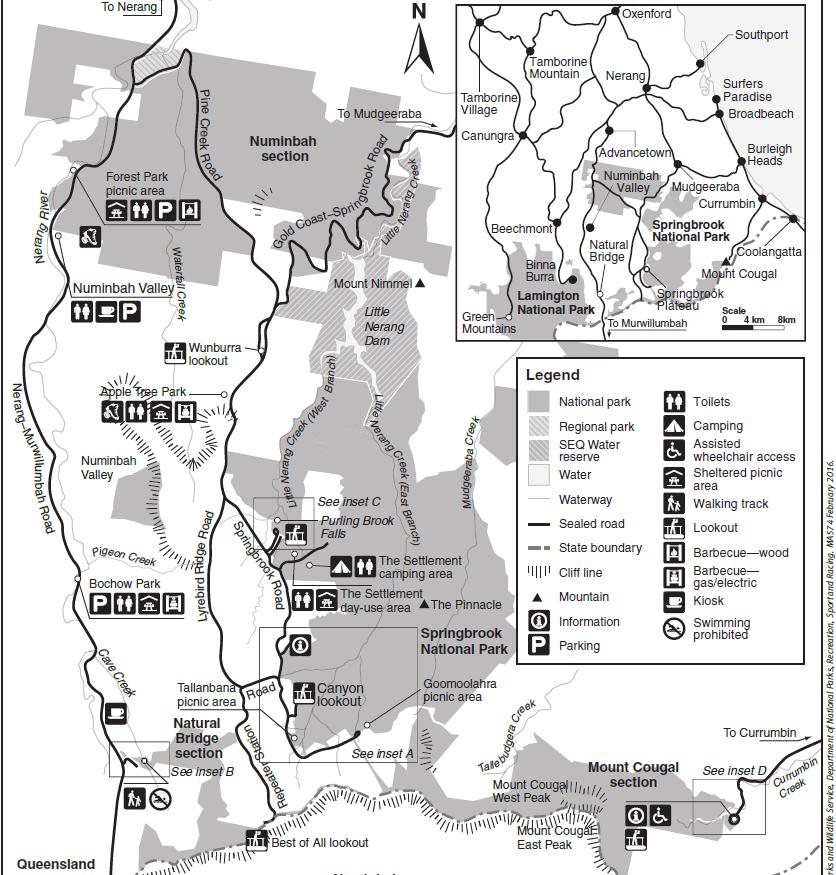 黃金海岸-推薦-景點-春溪國家公園-藍光蟲洞-遊記-一日遊-Springbrook-National-Park-Glow-Worm-Cave