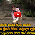 Tillakaratne Dilshan Teaching How He Play Dil Scoop Shot - Dil Scoop Shot Training By T. Dilshan