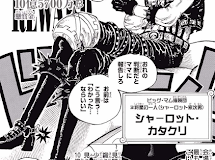 One Piece 864 spoilers