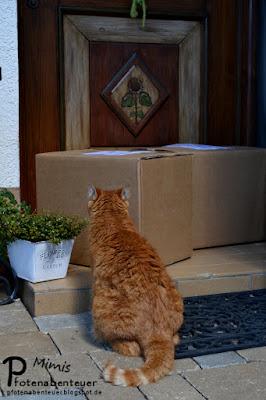 Der Weg zur Haustür wird von großen Paketen versperrt