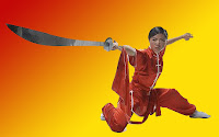 Concepts Behind the Art of Wushu, the Chinese Kung Fu