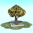 3d Tree cartoon