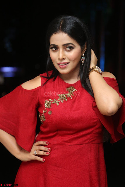 Poorna in Maroon Dress at Rakshasi movie Press meet Cute Pics ~  Exclusive 01.JPG