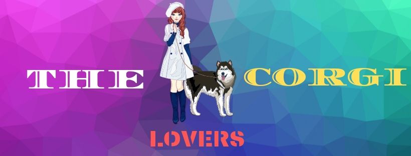 The Corgi Lovers