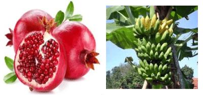 harga produk herbal ambejoss menghilangkan wasir luka, hubungi jual herbal ambejoss menghilangkan wasir luka, tempat jual herbal ambejoss menghilangkan wasir luka