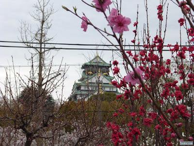 大阪城と桃