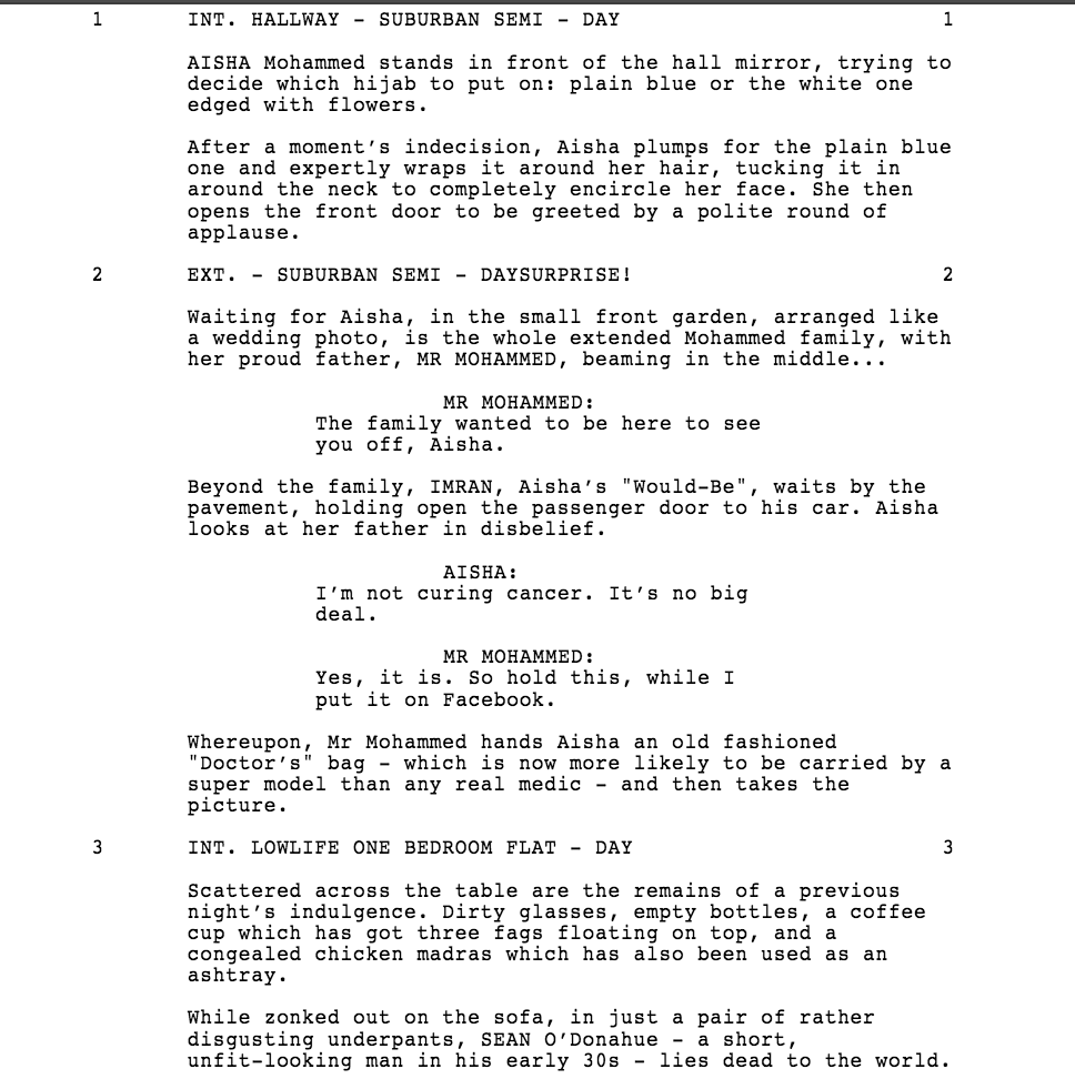 celtx edited script this is the link to the edited script and i also included a screenshot and roughly what it looks like