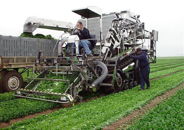 Agricultural Mechanization Consultancy