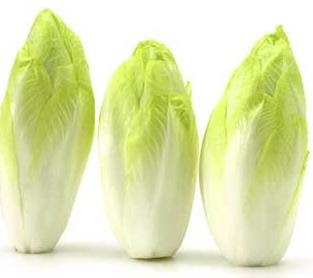 Endive - Fruits And Vegetables
