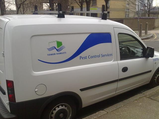 Dubai Pest Control Services