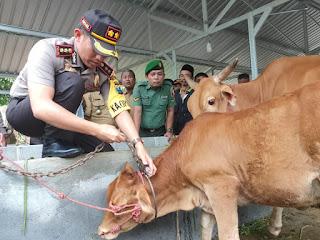 Keseriusan Polres Lumajang Tangani Curwan Sapi, Kapolres Resmikan GASTER di Sumbersuko