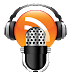 De podcast bloeit als nooit tevoren
