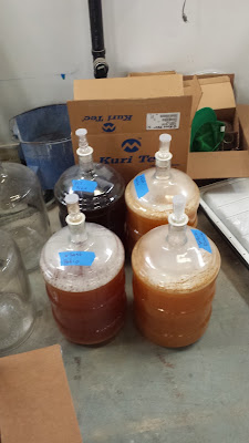The four versions, the color difference is all the microbes and fermentation.
