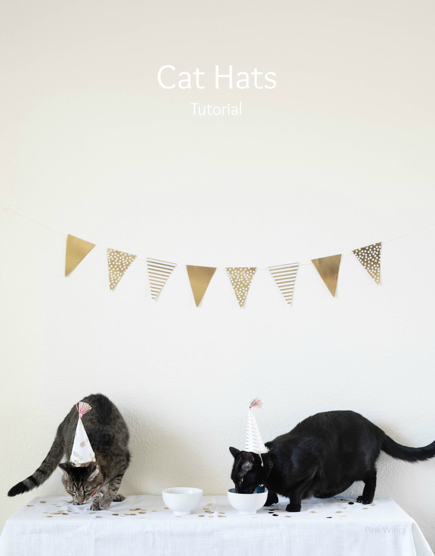 how to make cat hats, mini hats, clothing for cats, diy birthday hats, birthday cat party ideas, cat lady blog