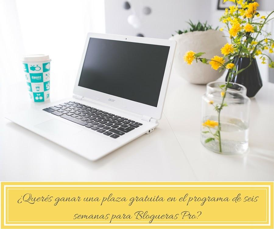 Quiero tener un blog profesional.