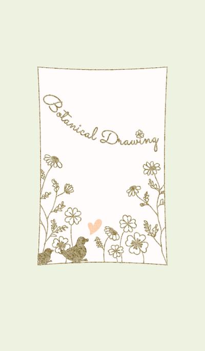 Botanical Drawing/Green 14