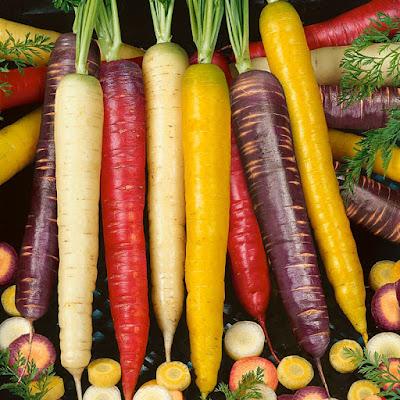morcovi diverse culori
