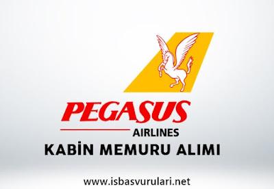 Pegasus iş ilanları