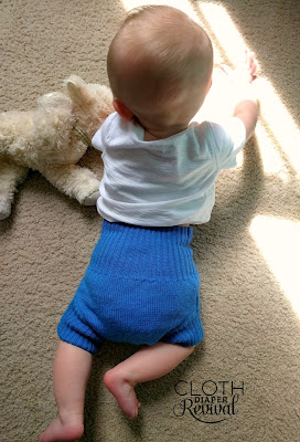 Wool Diaper Covers Cloth Diaper Revival