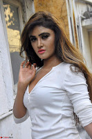Sony Charishta in White Top and Denim jeans ~  Exclusive Galleries 009.jpg