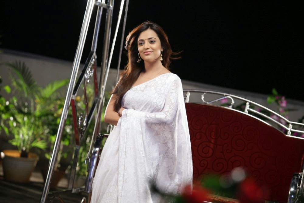 Nisha Agarwal Hot Transparent Saree Pics