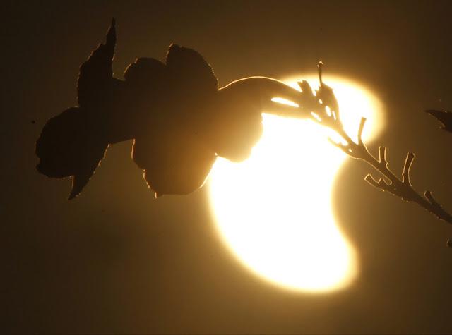 Képsorozat a 2016-os teljes napfogyatkozásról (FOTÓK!)