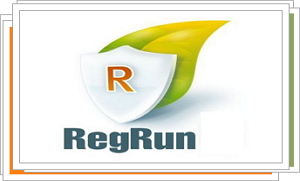 RegRun Security Suite Standard 6.9.7.124 Download
