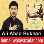 http://www.humaliwalayazadar.com/2017/09/ali-ahad-bukhari-nohay-2018.html
