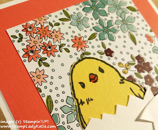 Chick in an Egg Card made with Stampin'UP!'s Honeycomb Happiness Stamp Set