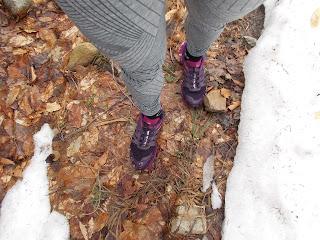 Chaussures de trail, randonnée, sol, feuilles mortes, neige, Montagne noire